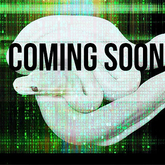 CUSTOMcoming soon.mp4
