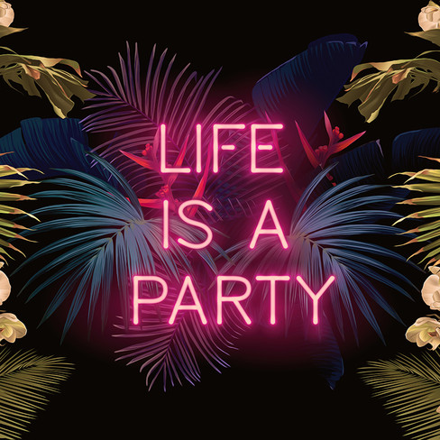 0390 life is a party.jpg