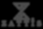 zattis logo oficial cor.png