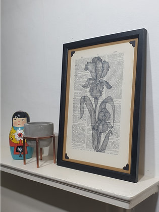 Iris Framed Dictionary Print