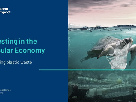 Investing in the Circular Economy: Reducing Plastic Waste