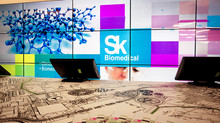Skolkovo BioMed-Supported Project Seeks Partners to Facilitate Commercialization