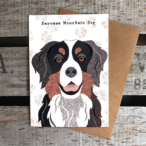 PAW54 Bernese Mountain Dog Card