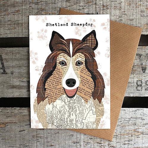 PAW33 - Shetland Sheepdog Card