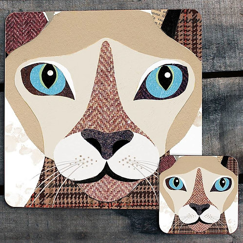 Sphynx Cat close up Placemat