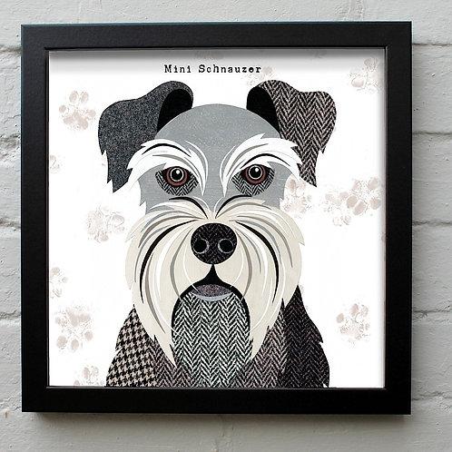 Mini Schnauzer Dog Art Print