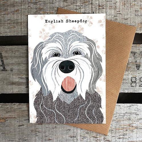 PAW43 English Sheepdog Card