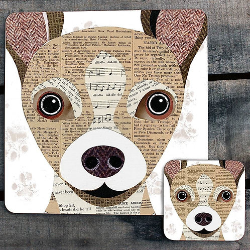 Chihuahua close up Placemat/Coaster