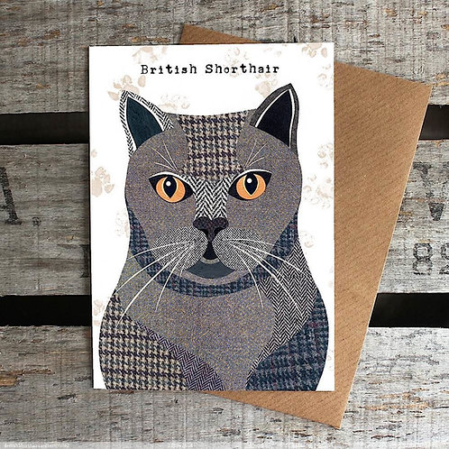 PURR 02 British Shorthair Card