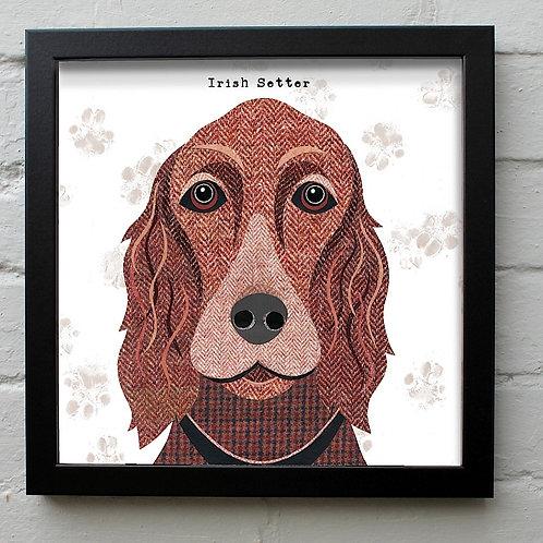 Irish Setter Dog Art Print
