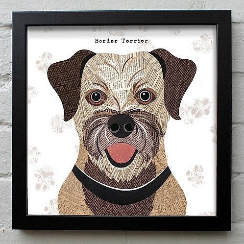 Border Terrier Dog Art Print