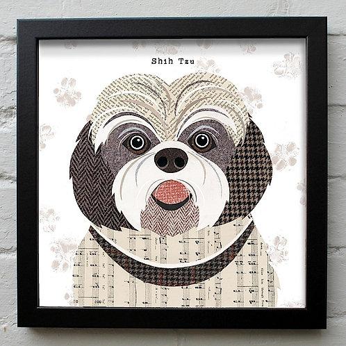 Shih Tzu Dog Art Print