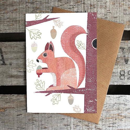 LH334 - Squirrel