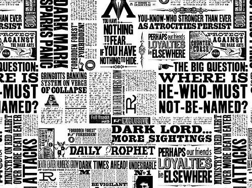 Harry Potter Newsprint