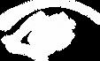 tieraugendoktor_logo.webp