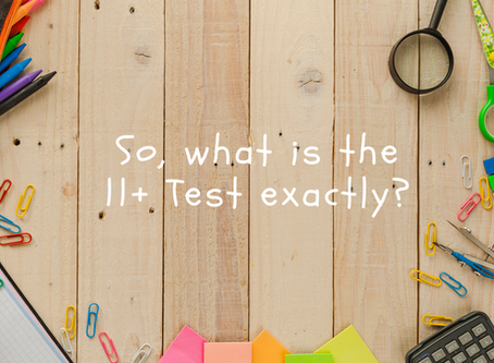 WHAT IS THE 11+ TEST?