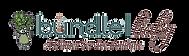 Bundle Baby Logo_edited.png