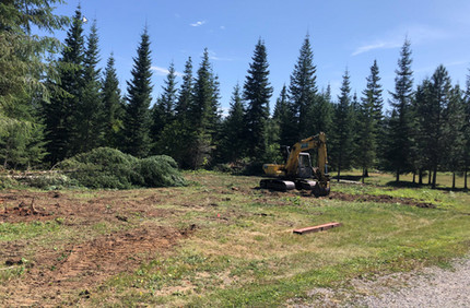 Clearing pad of trees and stumps.jpg
