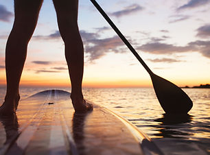 paddle board on the beach, close up of s