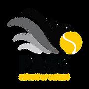 Official PASS Logo Gold.png