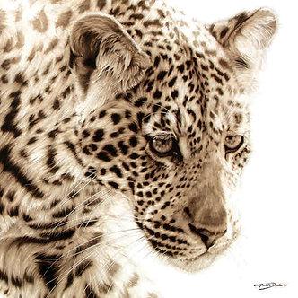 Silk - Michelle Decker - Tread Lightly - 36x36in