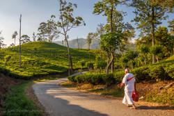 20150318_Sri Lanka_0093 - Kopie