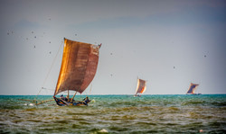 20150328_Sri Lanka_0159-Bearbeitet - Kopie
