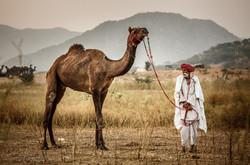 20141101_Indien_0004
