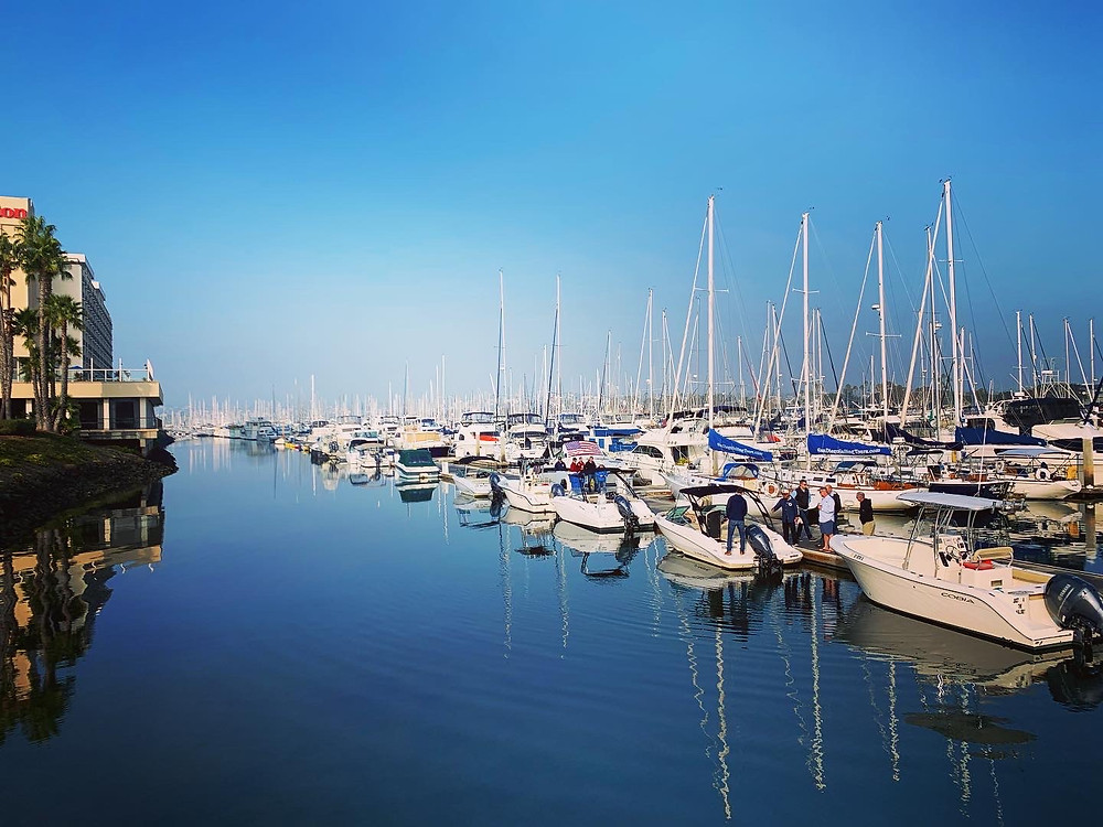 Rows of boats lined up along the docks at Freedom Boat Club San Diego