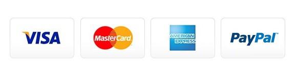 Visa, MasterCard, American Express, PayPal payment logos
