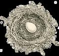 BirdInHand_logo_edited.jpg