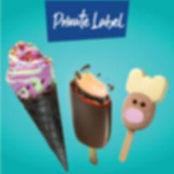 Private label ice cream manufacture.jpg