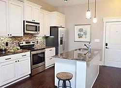 Norht side chicago kitchen.jpg