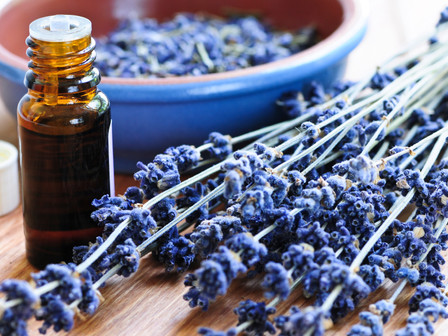 Lavender Oil for Anxiety