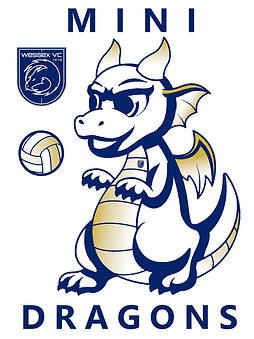 Mini Dragons 2 - volleyball.png