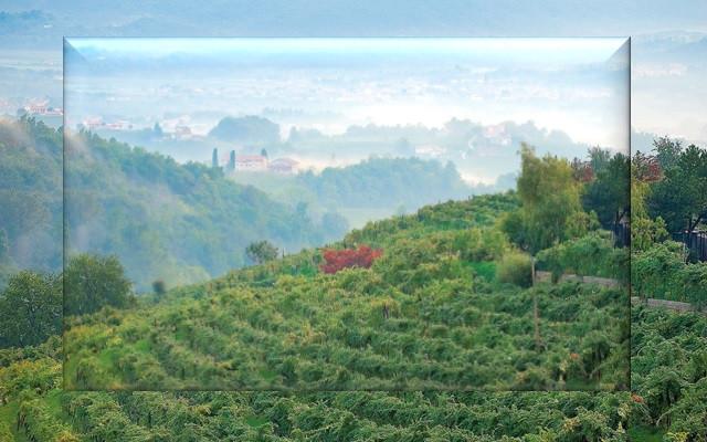 Wijnheuvels van Treviso