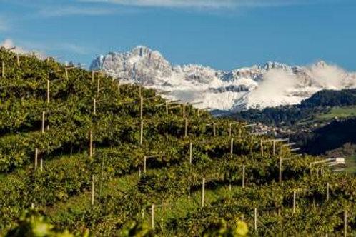 Themapakket Trentino