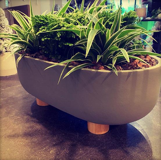 Prachtige pot met planten...
