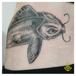 CLIENTS WISH OF A FISH