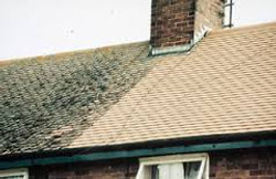Roof Cleaning, Soft Wash