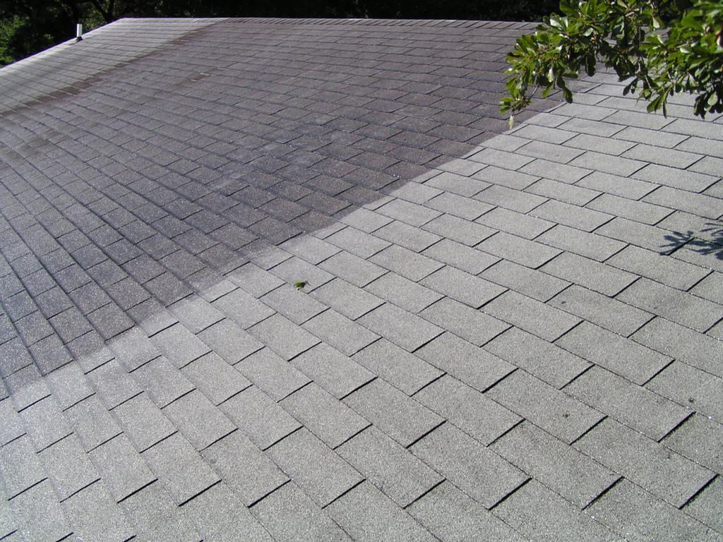 Roof Cleaning