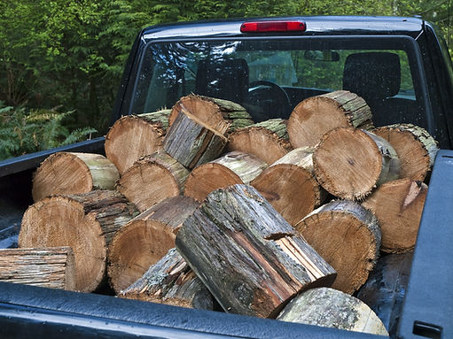pickup truck with cut logs.jpg
