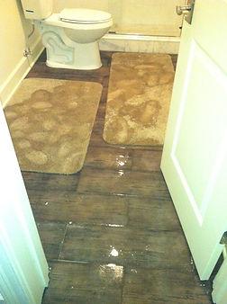 Toilet Flood.jpg