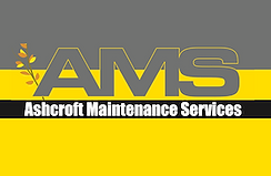 AMS Logo 2.png