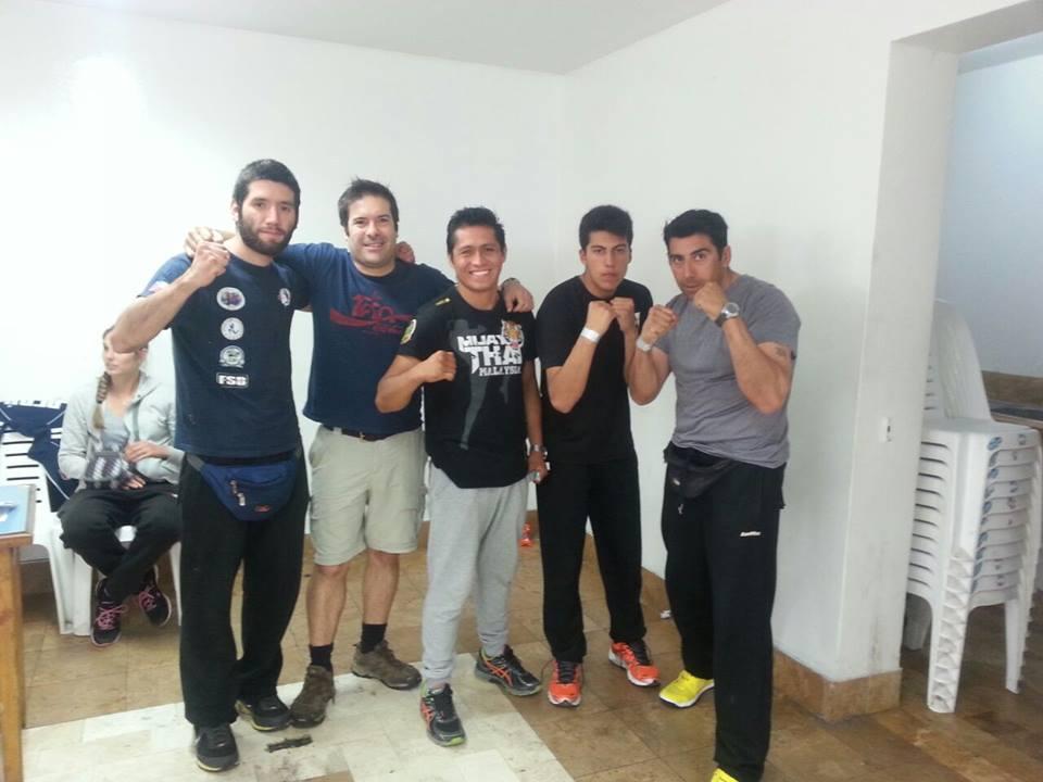 sudamericano 2014