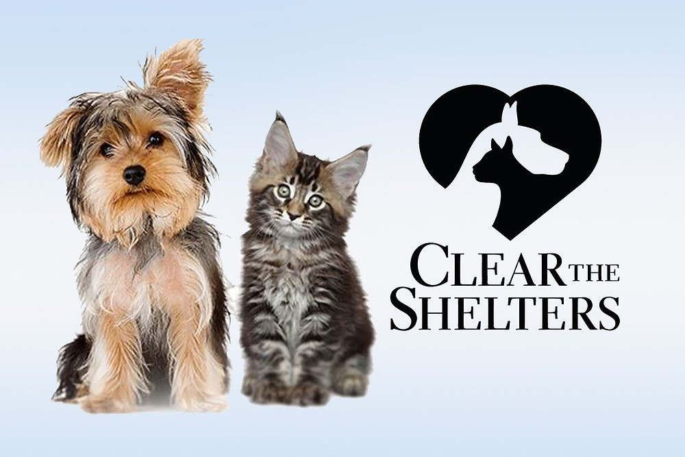 Clear the Shelters Logo for the event