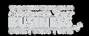 Mentor Workshops - WHITE.png