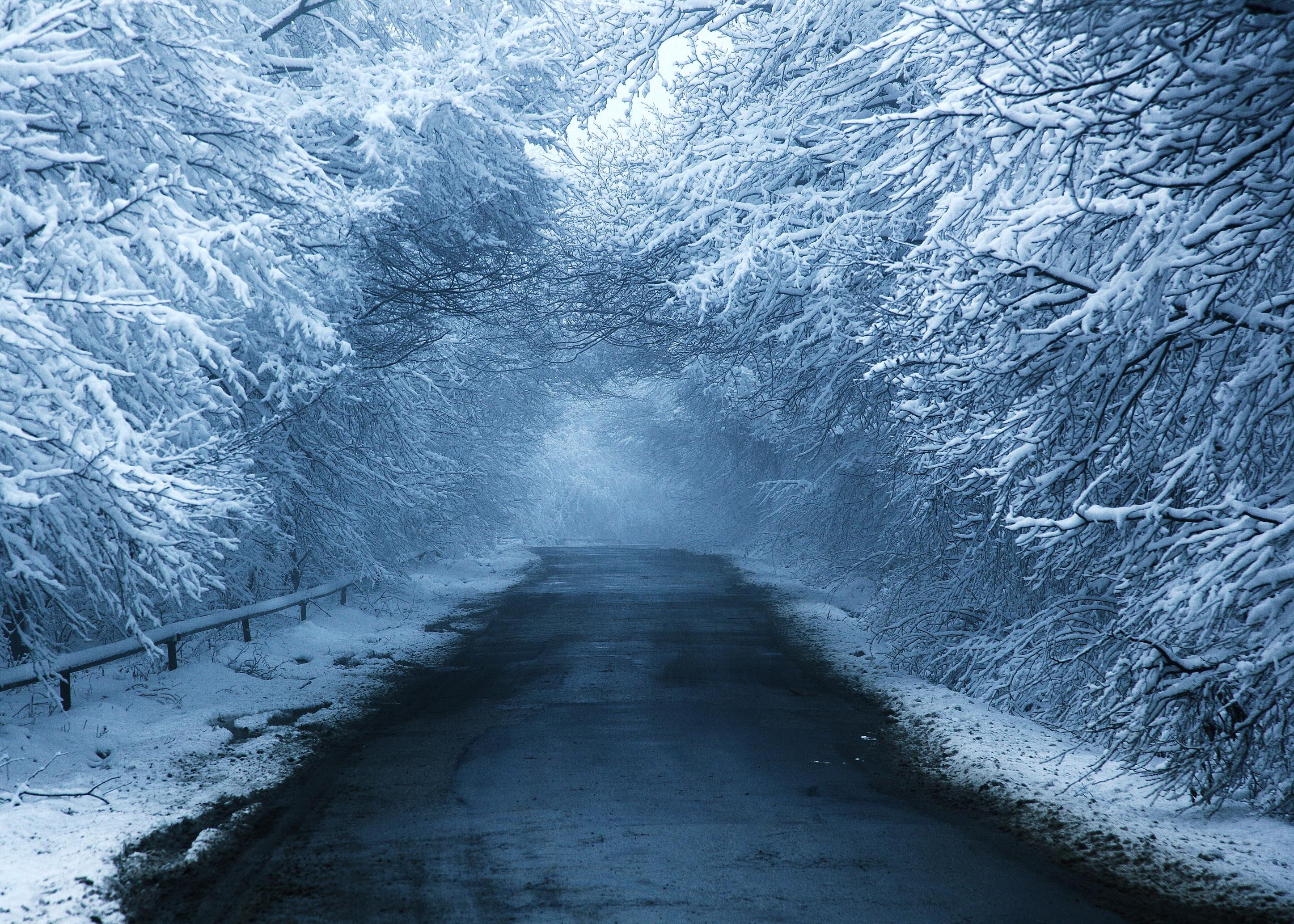 Kojori Snow