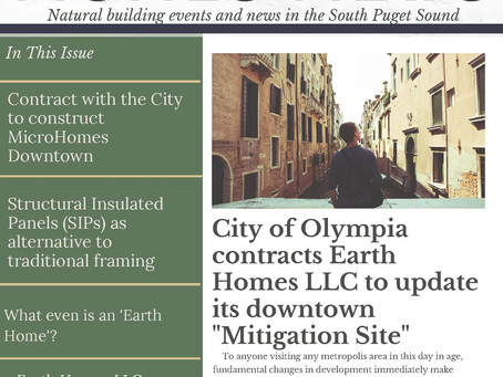 Earth Homes News Issue 1