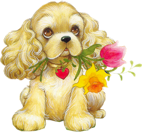 Image result for american cocker spaniel clipart